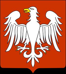 logotyp piotrkow.png